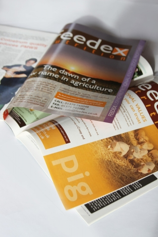 Feedex Magazine Advert Series