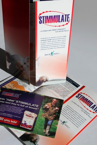 Stimmulate Gatefold Brochure