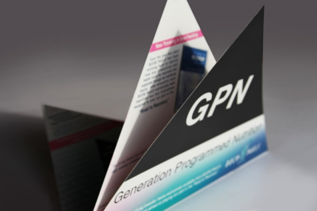 Triangle GPN Brochure